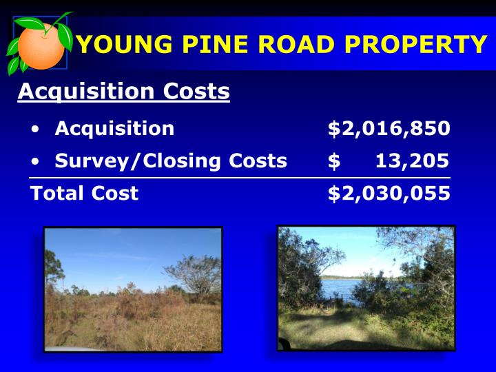 YOUNG PINE ROAD PROPERTY
