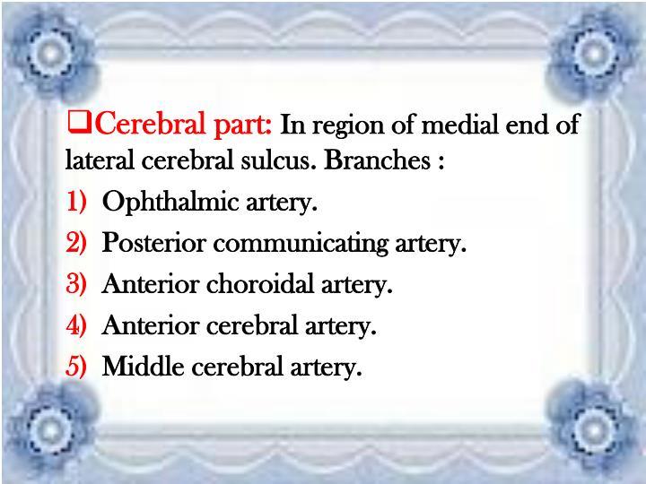 Cerebral part: