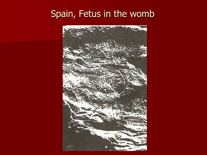 Spain, Fetus in the