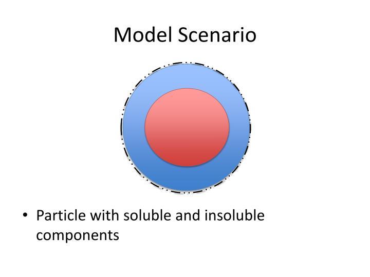 Model Scenario
