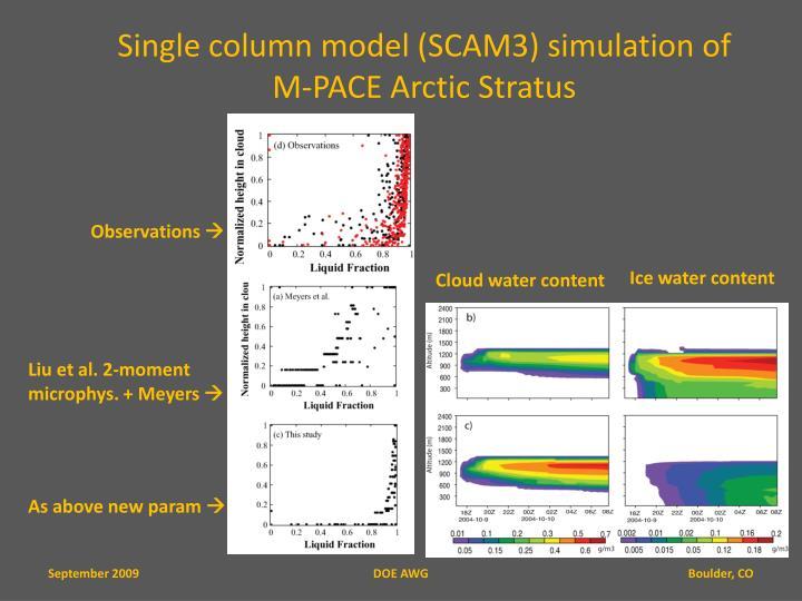 Single column model (SCAM3) simulation of