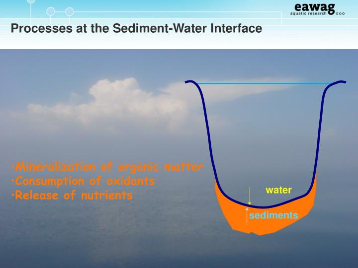 Processes at the Sediment-Water Interface