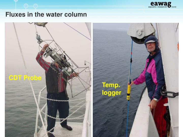 Fluxes in the water column