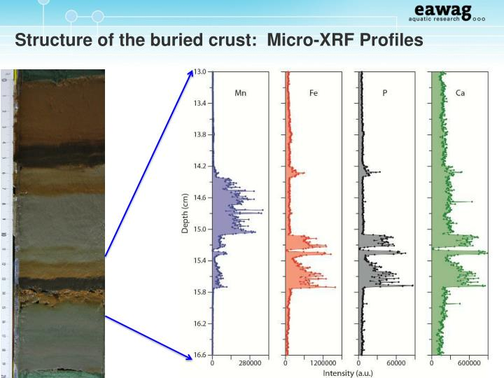 Structure of the buried crust:  Micro-XRF Profiles