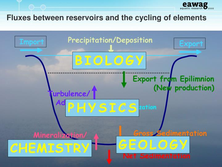 Fluxes between reservoirs and the cycling of elements