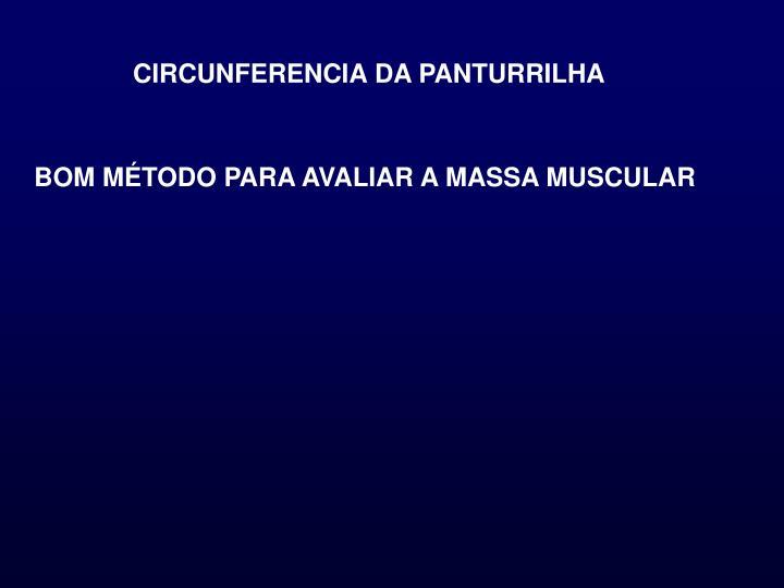 CIRCUNFERENCIA DA PANTURRILHA