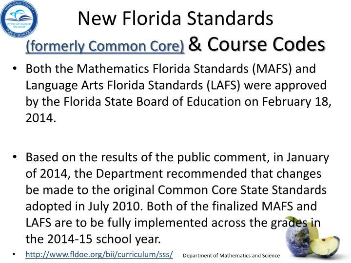 New Florida Standards