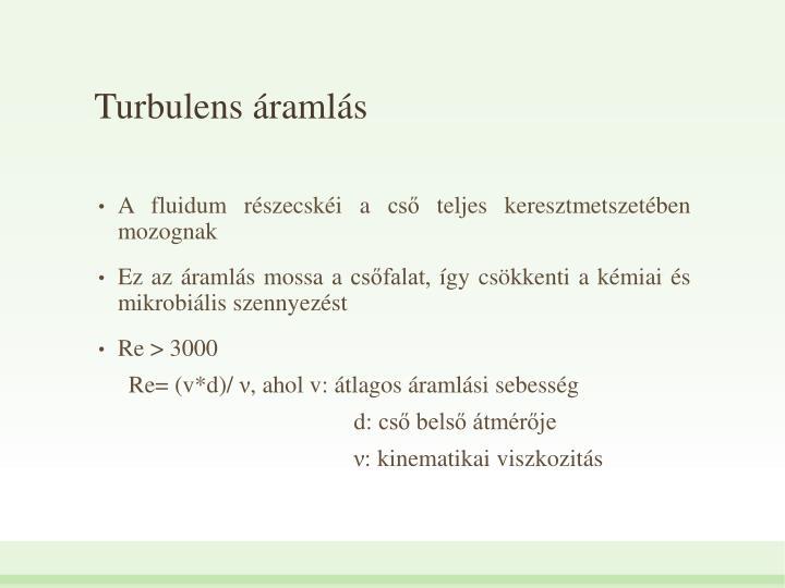 Turbulens ramls