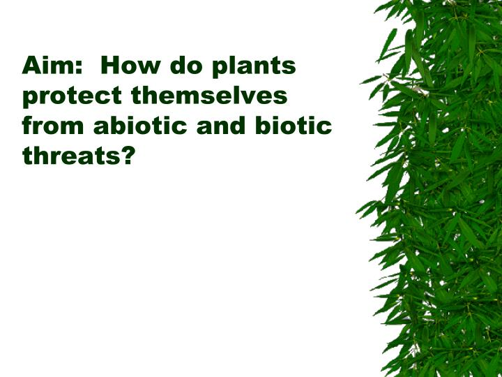 Aim how do plants protect themselves from abiotic and biotic threats