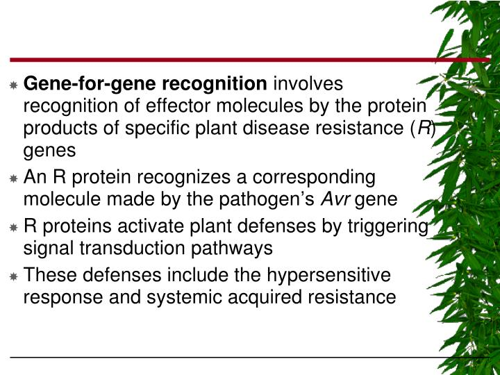 Gene-for-gene recognition