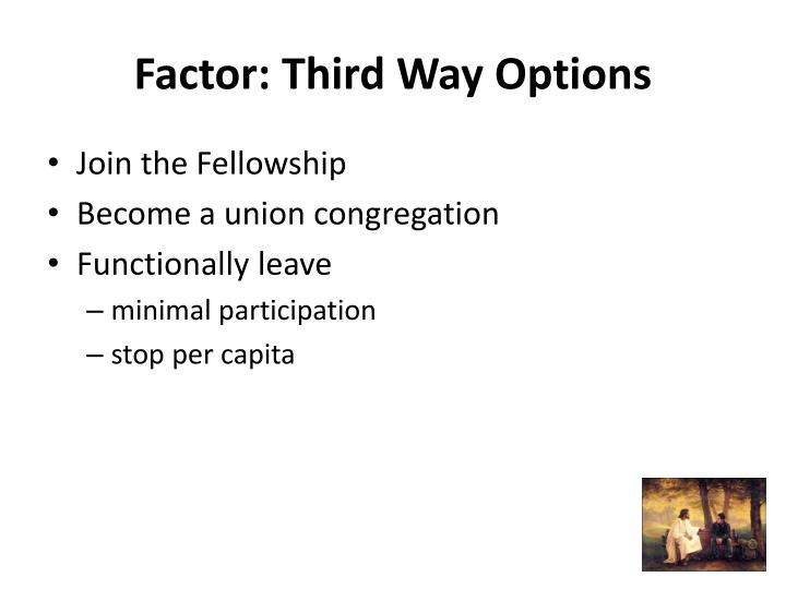Factor: Third Way Options