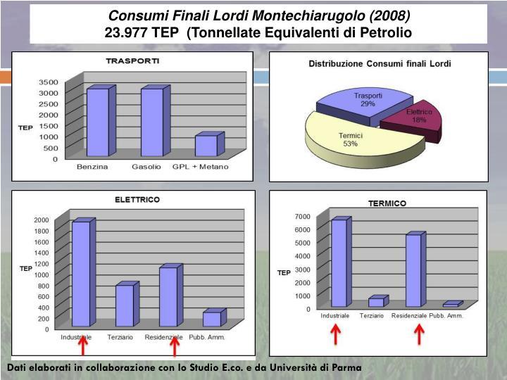 Consumi Finali Lordi Montechiarugolo (2008