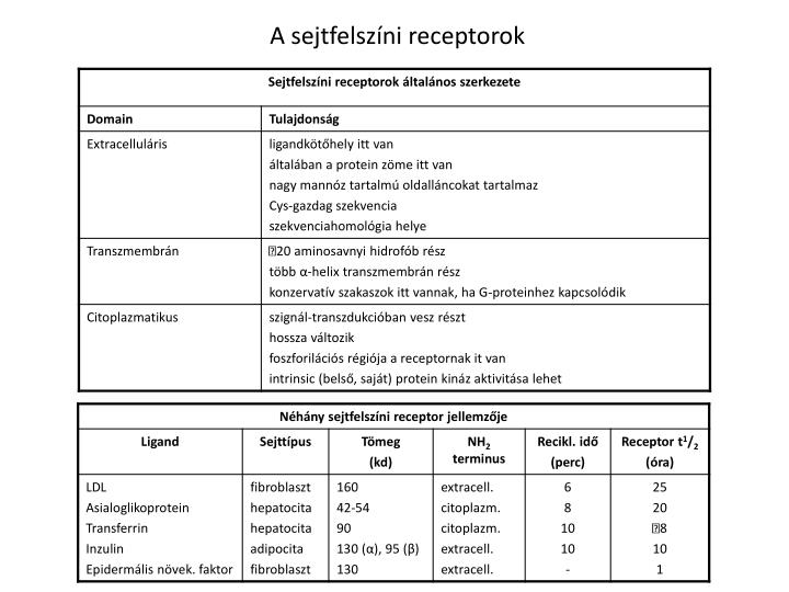 A sejtfelszíni receptorok