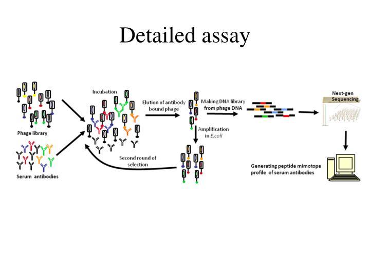 Detailed assay