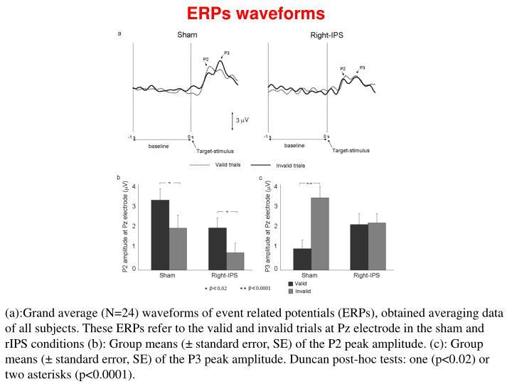 ERPs waveforms