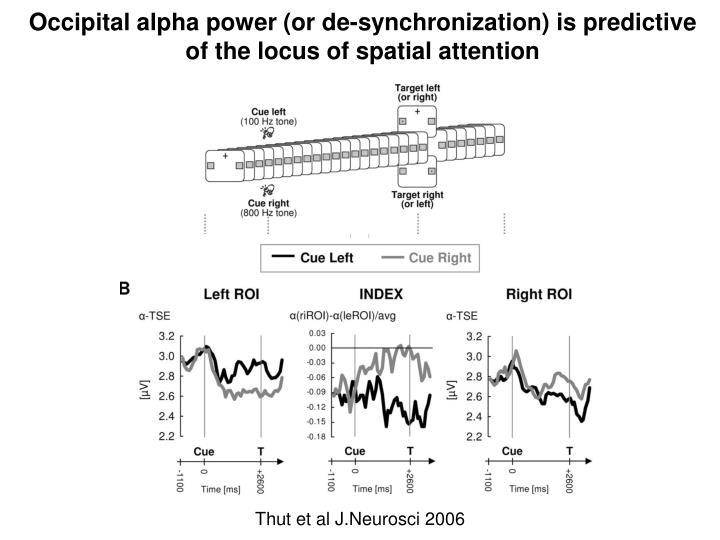 Occipital alpha