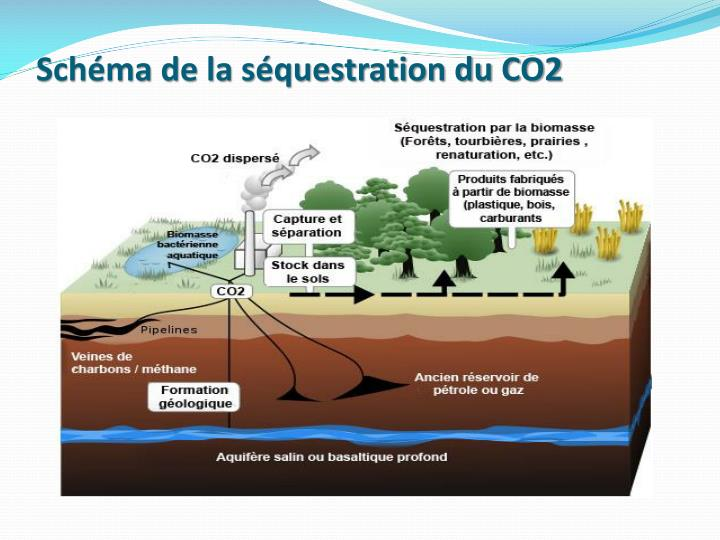 Schéma de la séquestration du CO2