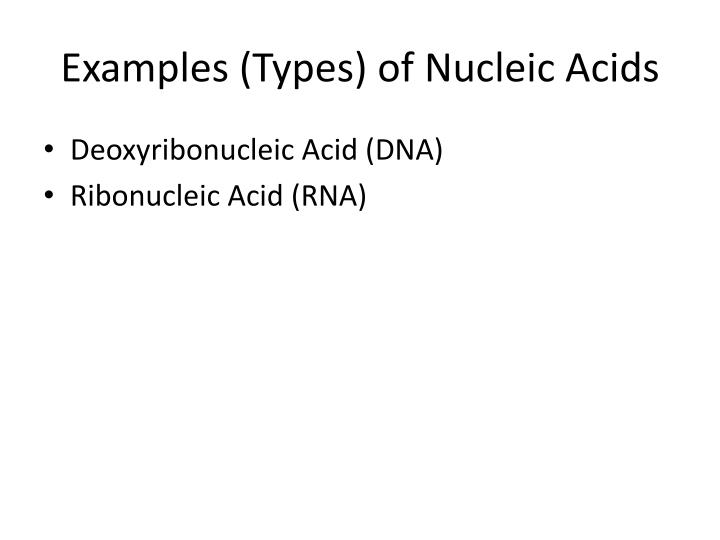 Examples (Types) of Nucleic Acids