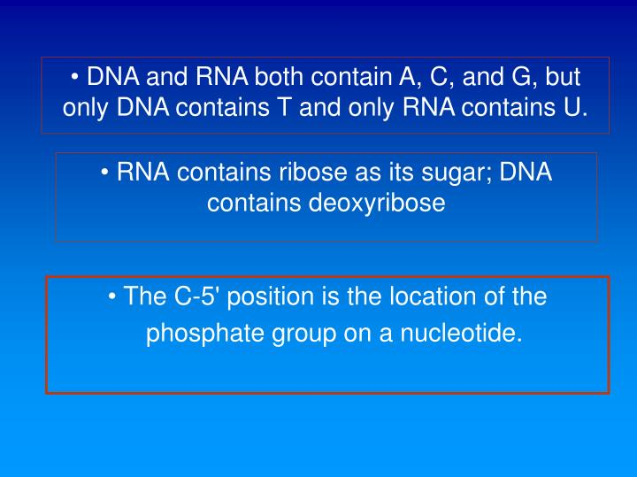 DNA and RNA both contain A, C, and G, but only DNA contains T and only RNA contains U.