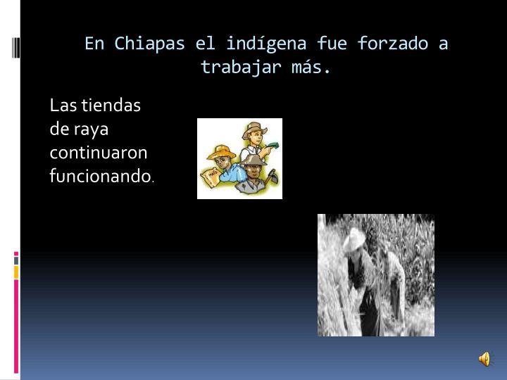 En Chiapas el indígena fue forzado a trabajar más.