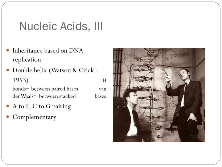 Nucleic Acids, III