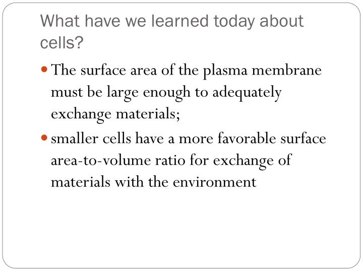 What have we learned today about cells?