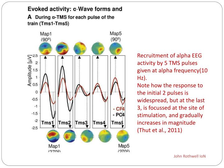 Recruitment of alpha EEG activity by 5 TMS pulses given at alpha frequency(10 Hz).