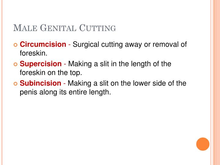 Male Genital Cutting