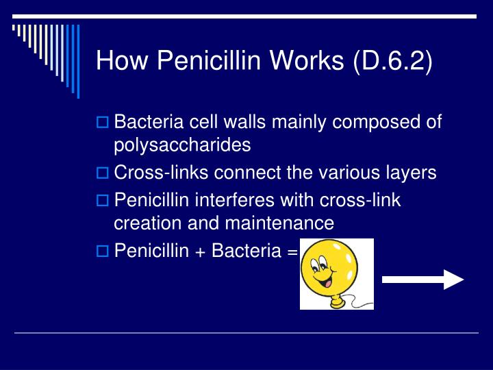 How Penicillin Works