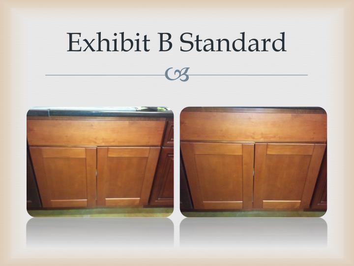 Exhibit B Standard