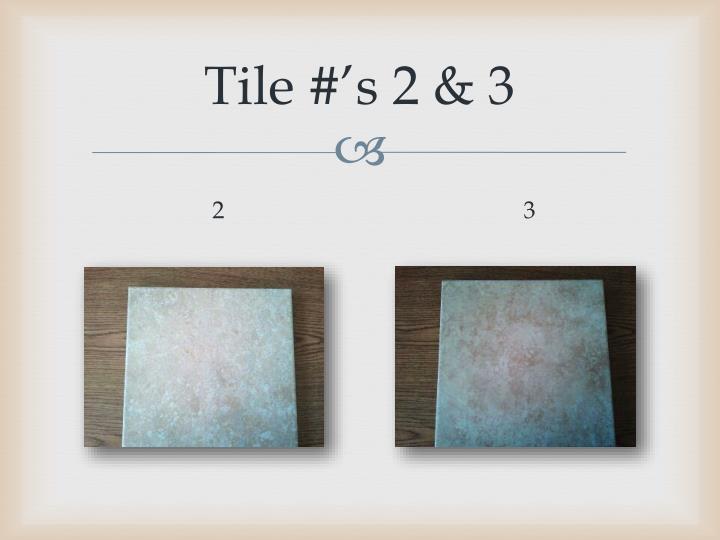Tile #'s 2 & 3