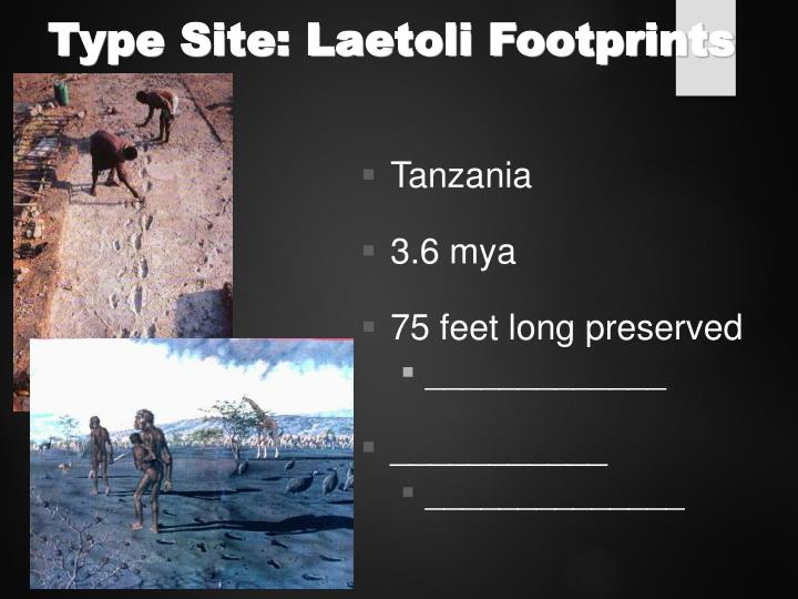 Type Site: Laetoli Footprints