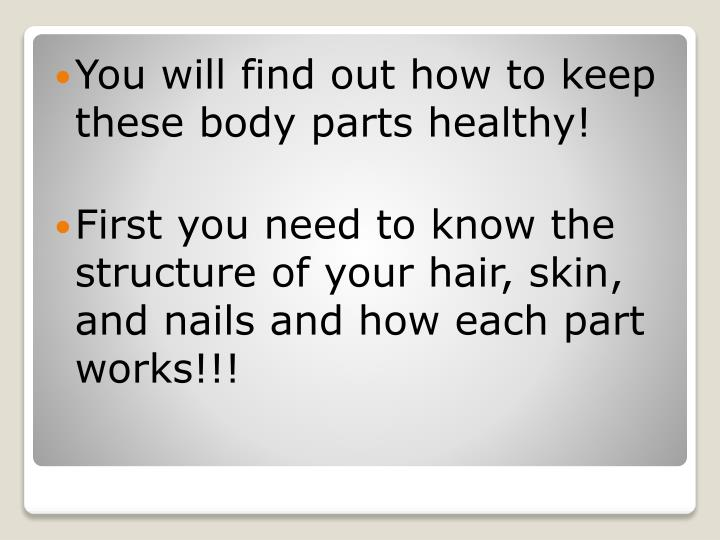 You will find out how to keep these body parts healthy!