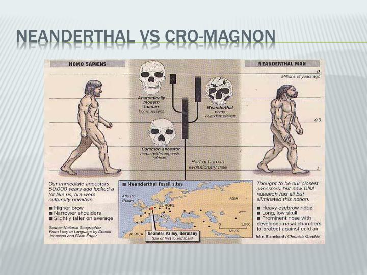NEANDERTHAL VS CRO-MAGNON