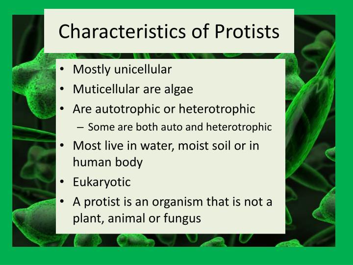 Characteristics of