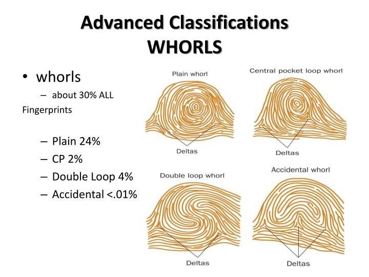 Advanced Classifications