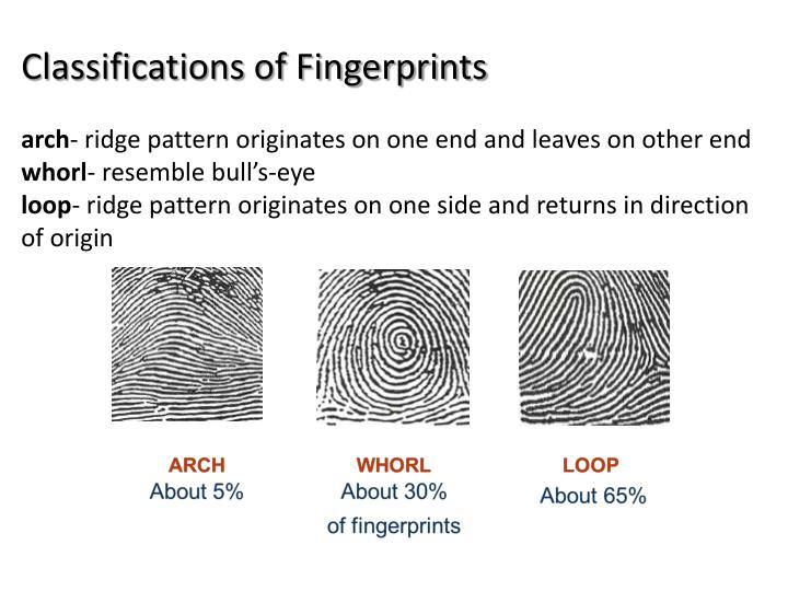 Classifications of Fingerprints