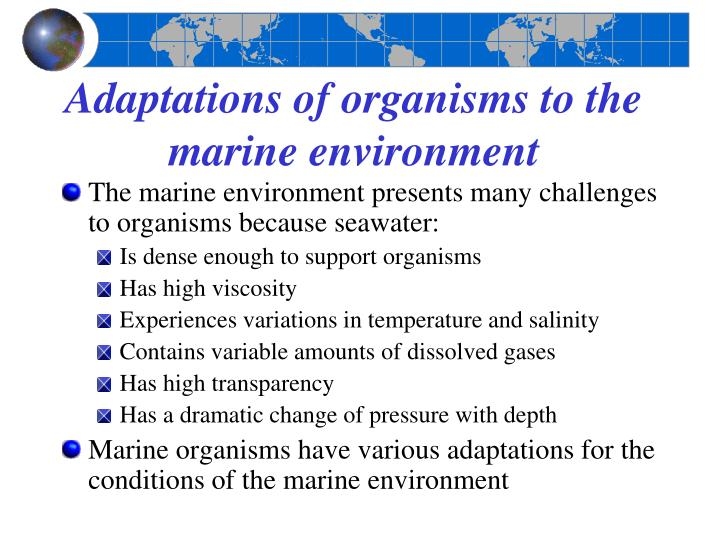 Adaptations of organisms to the marine environment