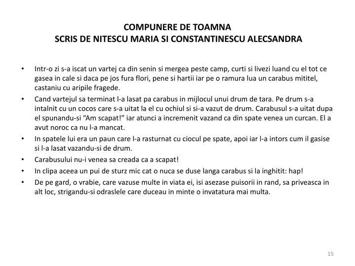 COMPUNERE DE TOAMNA