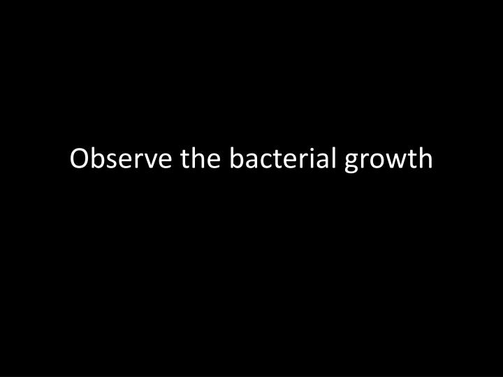 Observe the bacterial growth