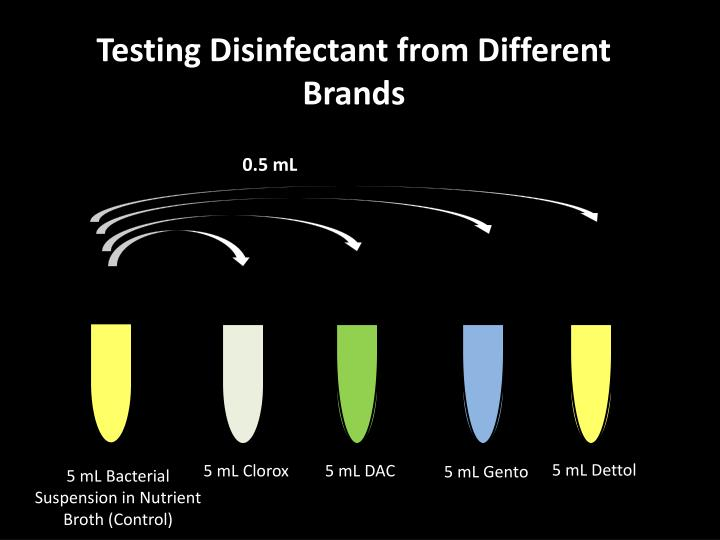 Testing Disinfectant from Different Brands