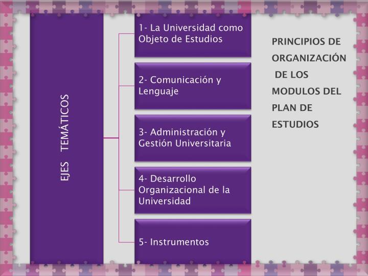 1- La Universidad como Objeto de Estudios