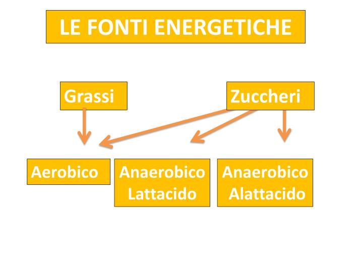 LE FONTI ENERGETICHE