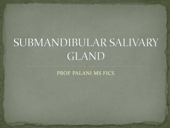 Submandibular salivary gland