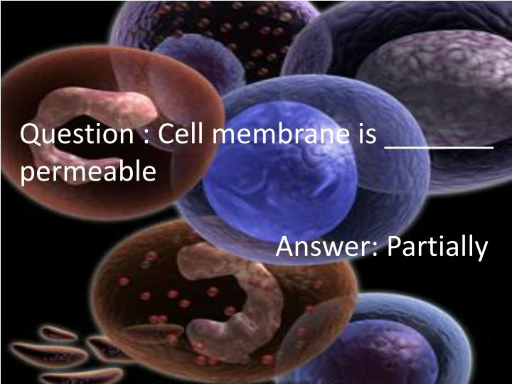 Question : Cell membrane is _______ permeable