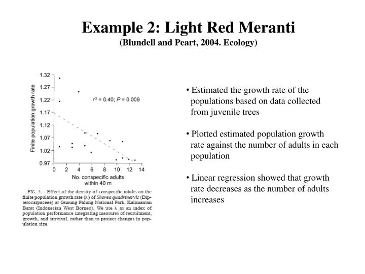 Example 2: Light Red Meranti