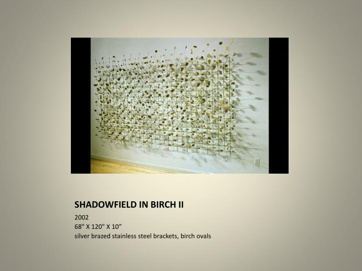 SHADOWFIELD IN BIRCH II