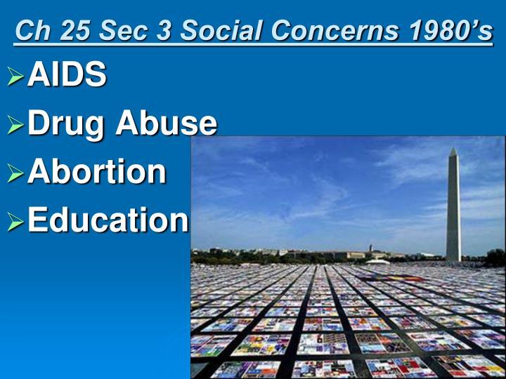 Ch 25 Sec 3 Social Concerns 1980's
