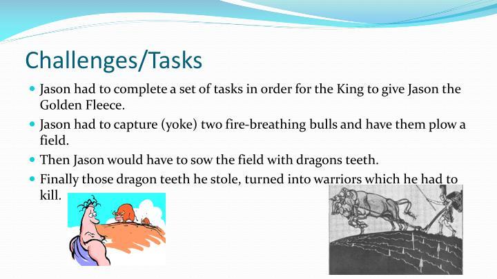 Challenges/Tasks