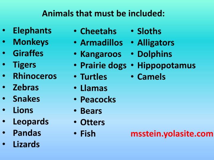 Animals that must be included: